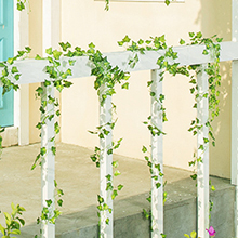 hanging ivy vines decoration