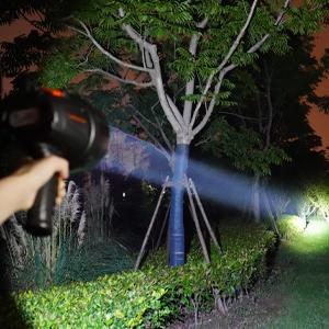 goodsmann spotlight
