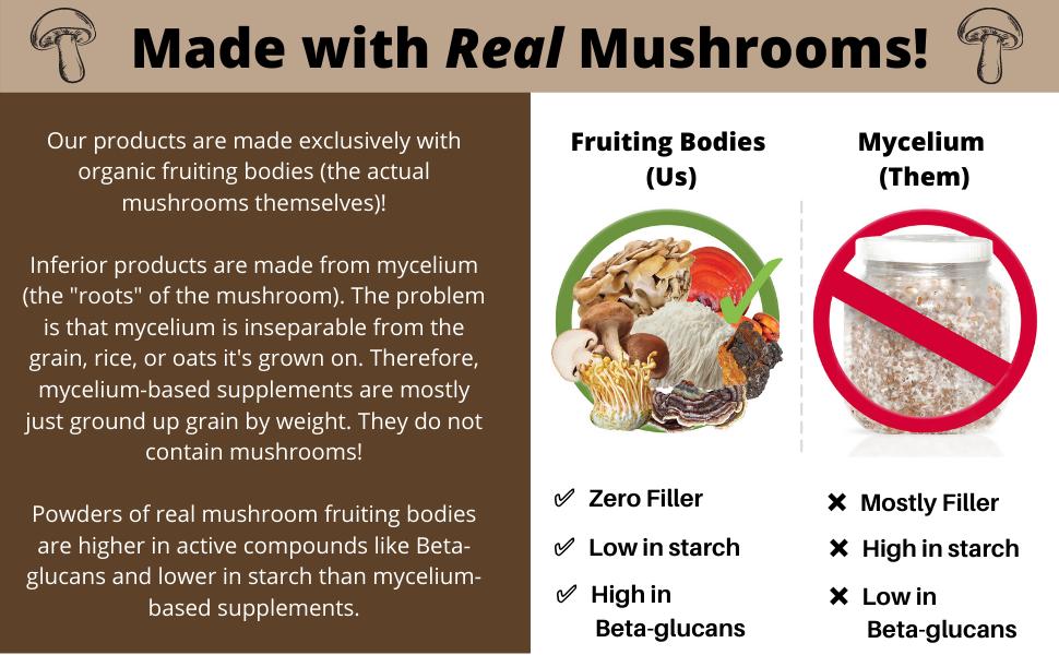 Fruiting bodies, fruit bodies, mycelium, beta-glucans, beta glucans, no filler, active compounds