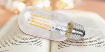 Two Edison LED Bulbs are Included