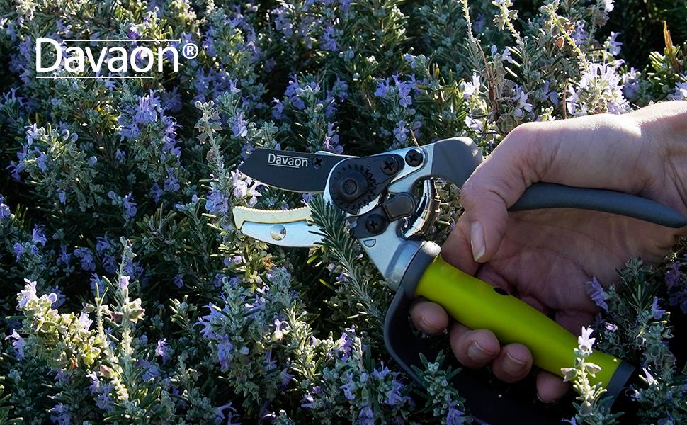 secateurs, pruning shears, garden secateurs, secateurs spear and jackson, secateurs for arthritic