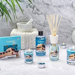 colony collection candles, reed diffuser