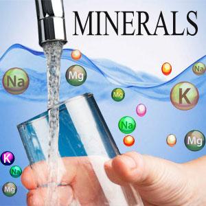 Remino Ro Mineral Purify