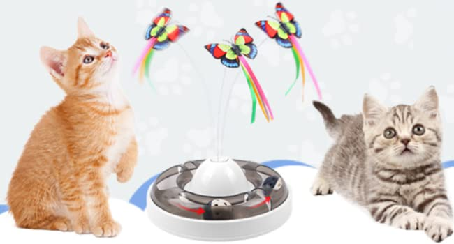 Interactive and automatic Electric Rotating Butterfly Cat Toy