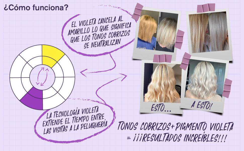 Champú Matizador Rubio con Pigmentos Violetas Para Conseguir Tonos Plateados - Adiós al Amarillo: Revitaliza el Cabello Rubio Teñido, Decolorado y con ...