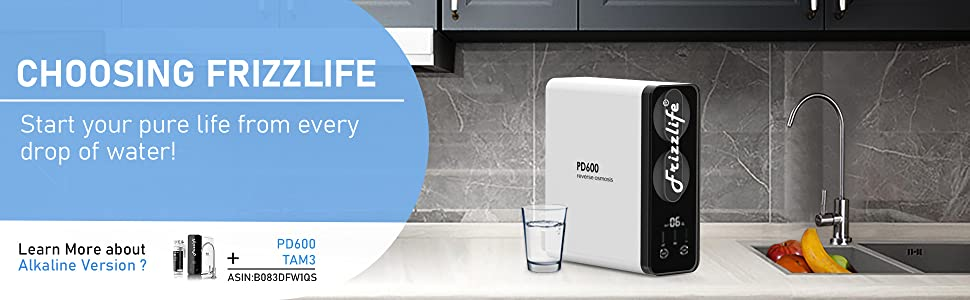 Frizzlife pd600 under counter filtration ro