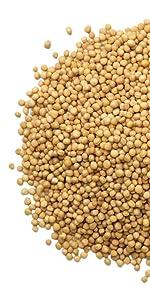 coriander seeds, food to live