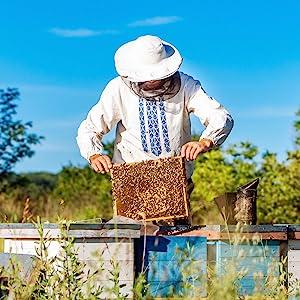 contracted beekeeping