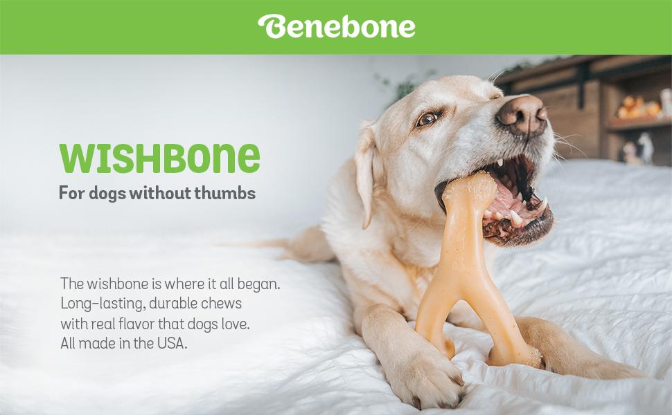 benebone wishbone collection
