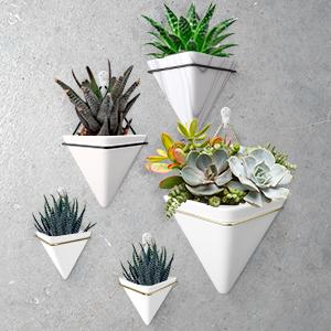 indoor gardening flower pot