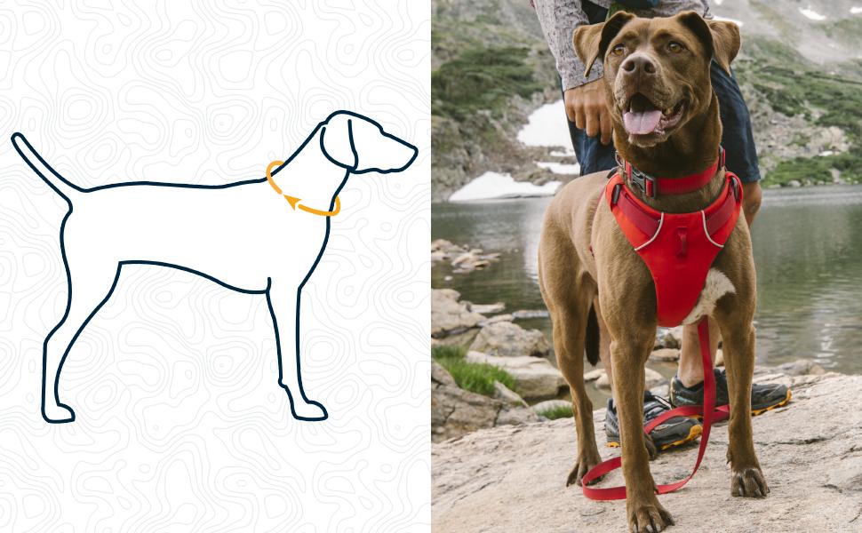 Dog no pull support reflective illuminated light visibility padded trail running walking