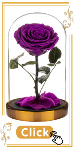 purple rose violet rose flower lilac amethyst grape lilac raisin royal light