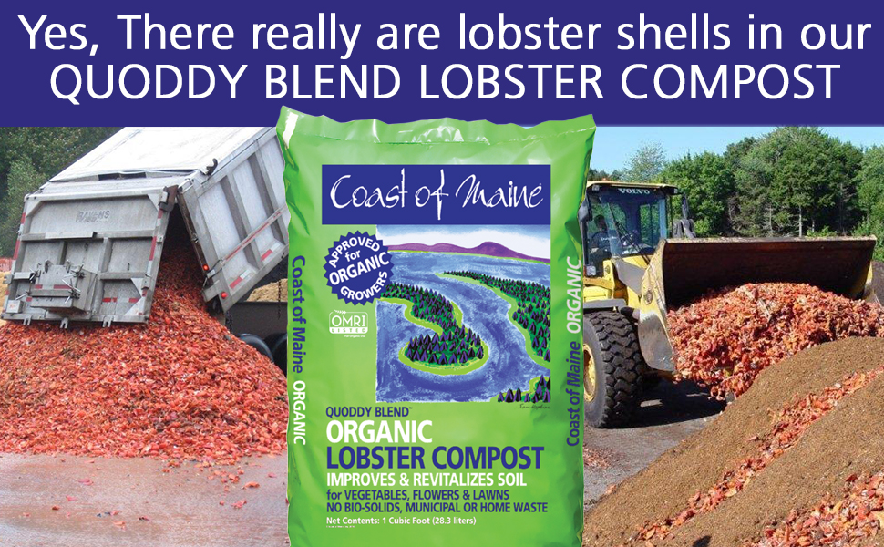 Lobster compost, organic soil conditioner, soil lobster shells, ocean harvest soil, quoddy blend