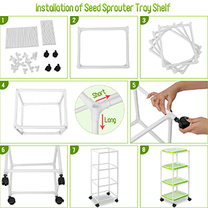 microgreens growing kit sprouts sprouting jar broccoli sprouting seeds wheatgrass seeds