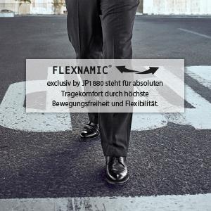 Flexnamic