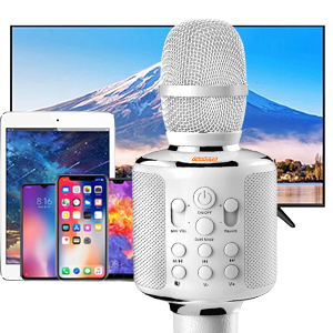 Karaoke Microphone Phone