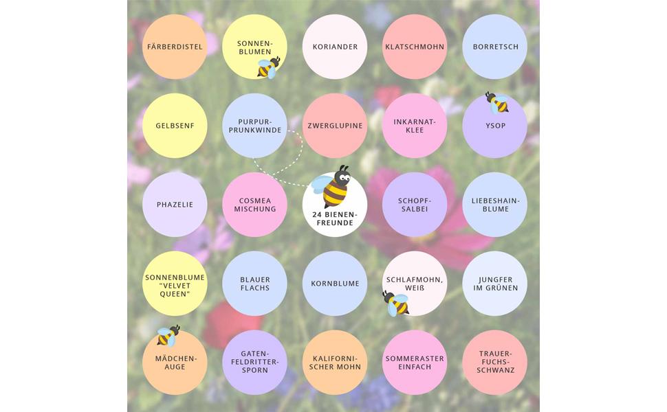 Bienenfreund Blumen Saatgut Adventskalender Bio-Saatgut