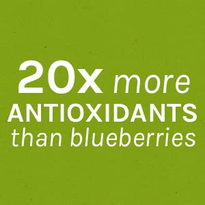 Contains 20x more antioxidants than blueberries