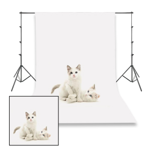 photo background stand kit, heavy duty backdrop support system, adjustable photo backdrop stand