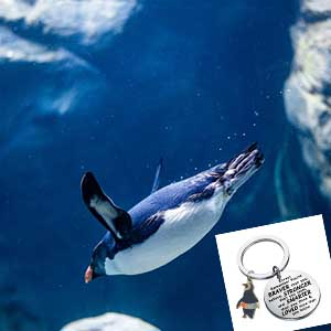 Penguin Jewelry GIFTS