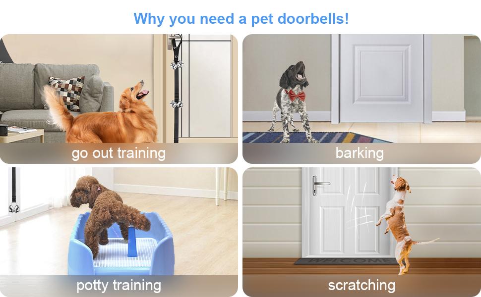 Toilet Training Door Bells
