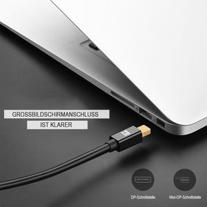 TechRise Mini DisplayPort
