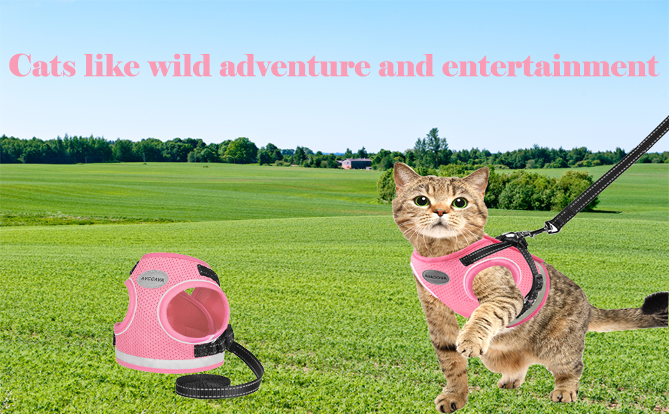Cat Harness and Leash for Walking, Escape Proof Soft Adjustable Vest Harnesses for Cats
