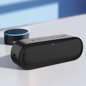SPeaker for echo dot