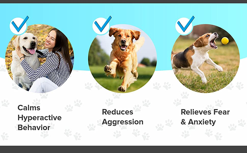 сalming treats for dogs