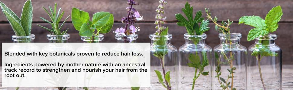 Organic, Botanical, plant ingredients