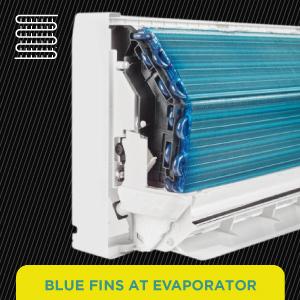 Blue Fins at Evaporator