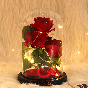 Beauty and The Beast Rose Enchanted Flower with LED Light in Glass Dome for Christmas Mother's Day