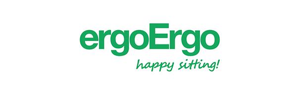 ergoergo flex seating