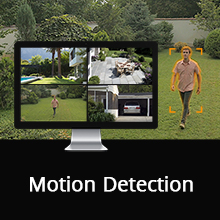 Motion Detection & Occlusion Detection