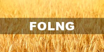 Folng Baking Tools