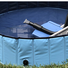 swimming pool for dog