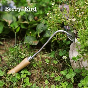 Berry&Bird Onion Hoe