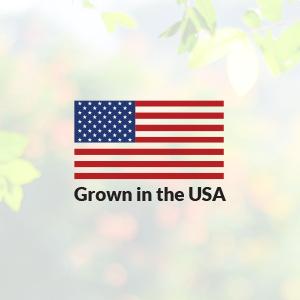 USA, American, safe, seeds