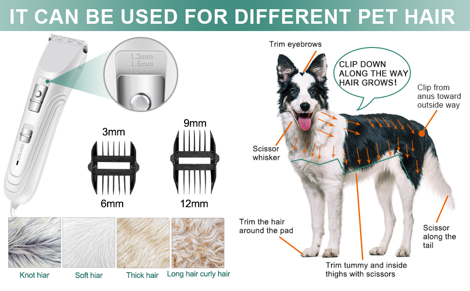 dog sheer clippers