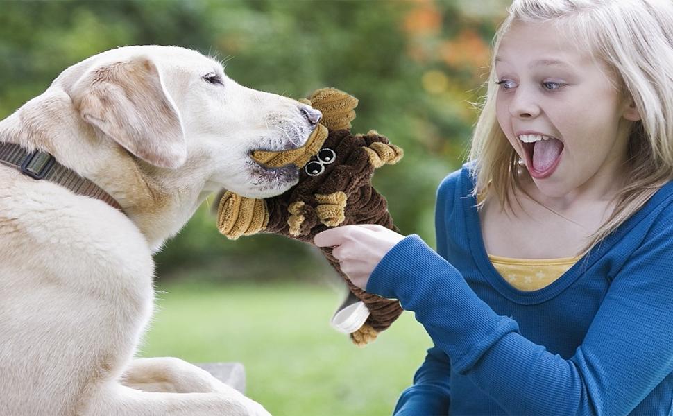 AWOOF dog toys