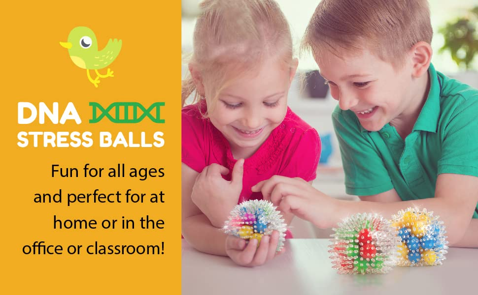 DNA Stress Balls. Fun for all ages and perfect for at home or in the office or classroom!