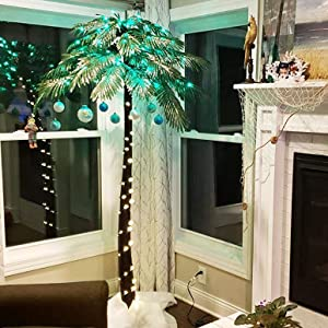 palm tree for indoor