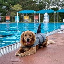 Dog Life Jacket