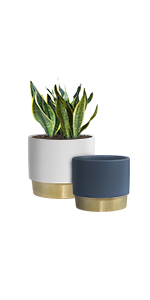 """GrowLED Ceramic Plant Pot 6"""" and 5 inch, Golden Matte White and Navy"""