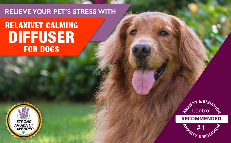 pheromone calming diffuser for dogs natural stress anxiety prevention