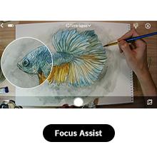 Manual Focus + Focus Assist