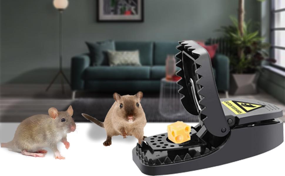 Trampa para ratones(juego de 6), ratonera de plástico para interiores y exteriores, trampa para ratas efectiva, fácil de instalar, golpe poderoso, reutilizable, trampas para matar: Amazon.es: Jardín