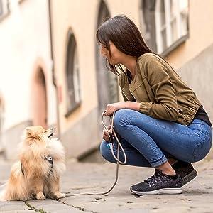 Dog,Leash