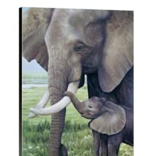 this moment elephant canvas staging