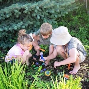 3 siblings backyard safari